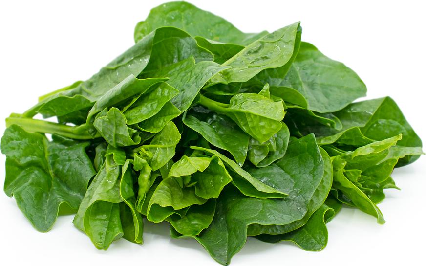 Malabar (Spinach)